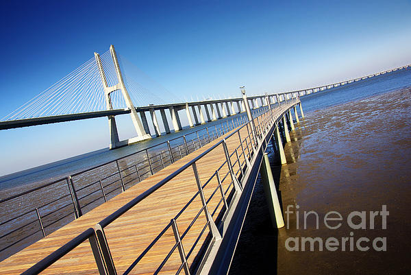 Architecture Photograph - Vasco Da Gama Bridge by Carlos Caetano