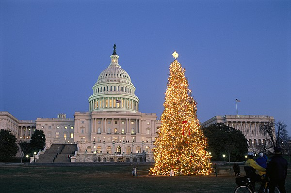 District Of Columbia Photograph - View Of The National Christmas Tree by Richard Nowitz
