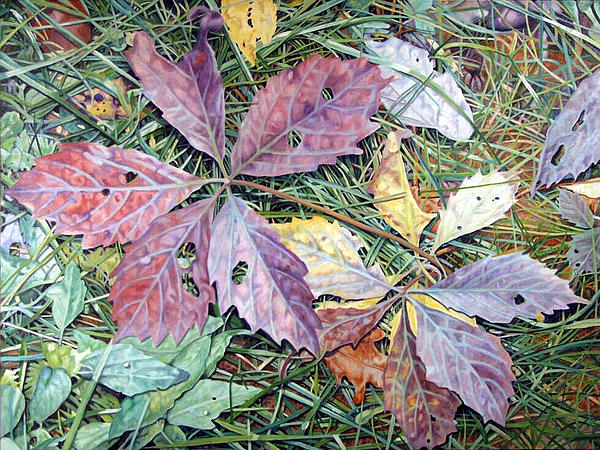 Oil Painting Painting - Virginia Creeper by - Harlan
