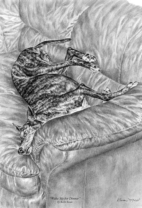 Greyhound Drawing - Wake Me For Dinner - Greyhound Dog Art Print by Kelli Swan