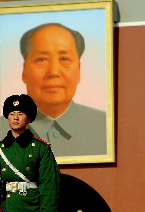 Moa Photograph - Watching Over Mao by Anthony Silver