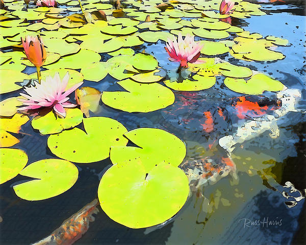 Water Lilies Painting - Water Lilies And Koi by Russ Harris