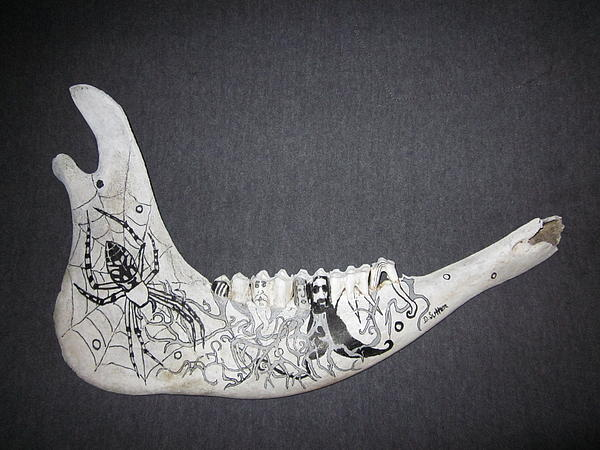 Jawbone Mixed Media - Webs Roots Life Death by David Sutter