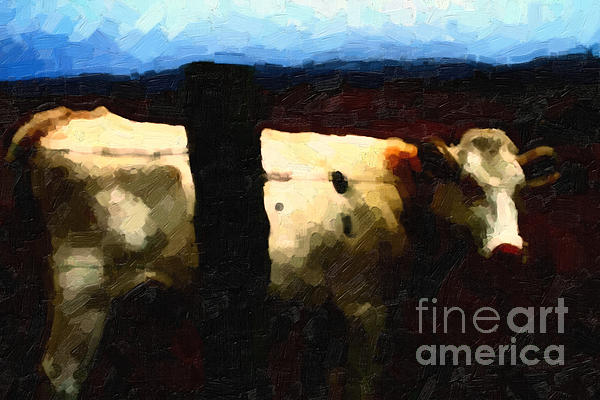 Cow Photograph - White Cow Behind Fence At Night by Wingsdomain Art and Photography