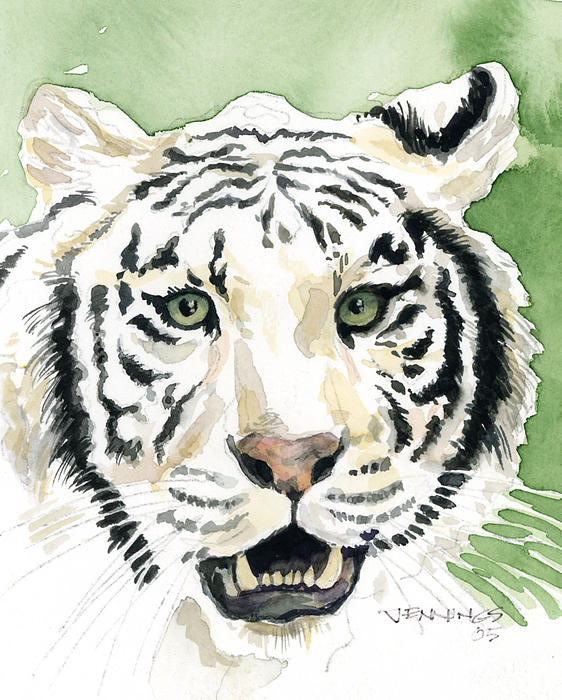 Tiger Painting - White Tiger by Mark Jennings