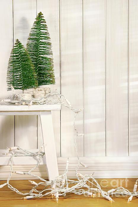 Bright Photograph - White Tree Lights  by Sandra Cunningham