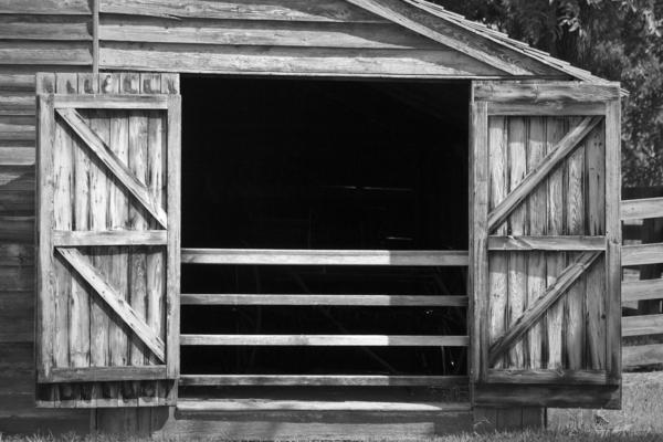 Appomattox Photograph - Who Opened The Barn Door by Teresa Mucha