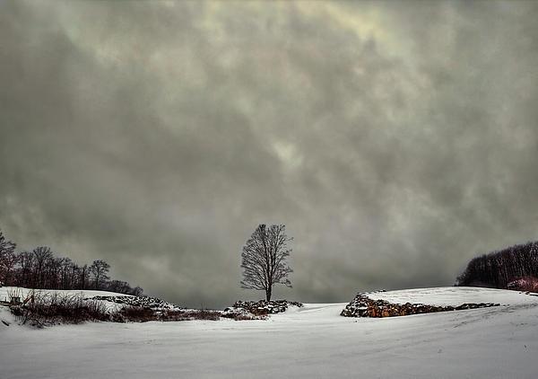 Cloud Photograph - Winter Blues by Evelina Kremsdorf