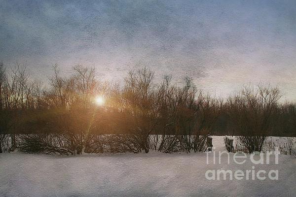 Alone Photograph - Winter Landscape  by Sandra Cunningham