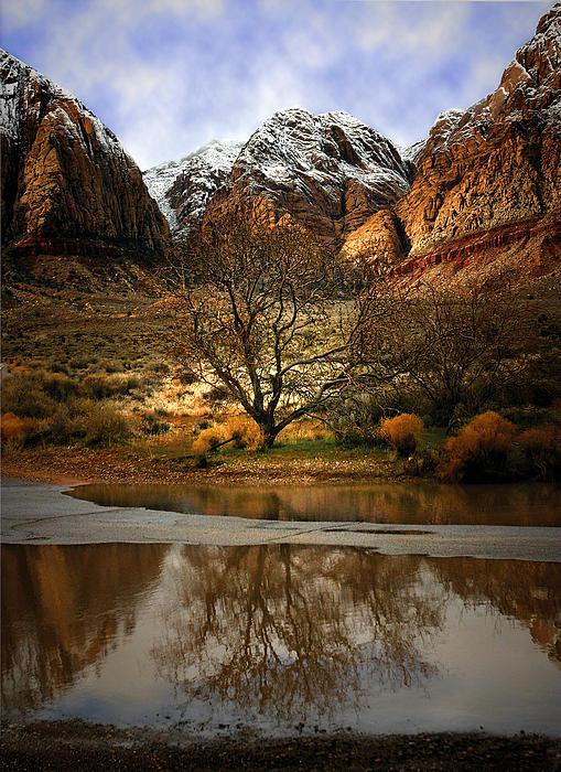 Red Rock Canyon Photograph - Winter Reflections by Nabila Khanam