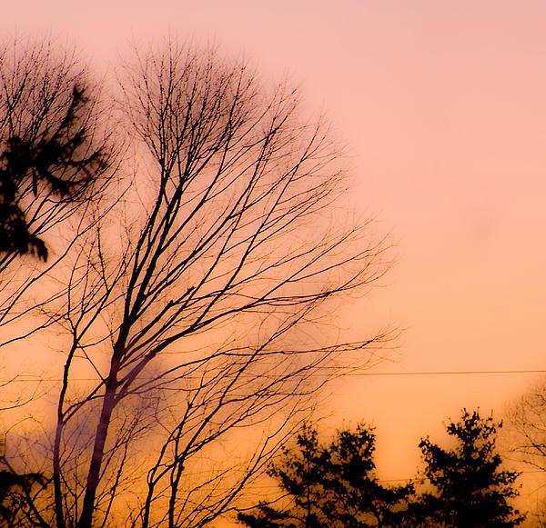 Sunrise Photograph - Winter Sunrise by Laurie Breton