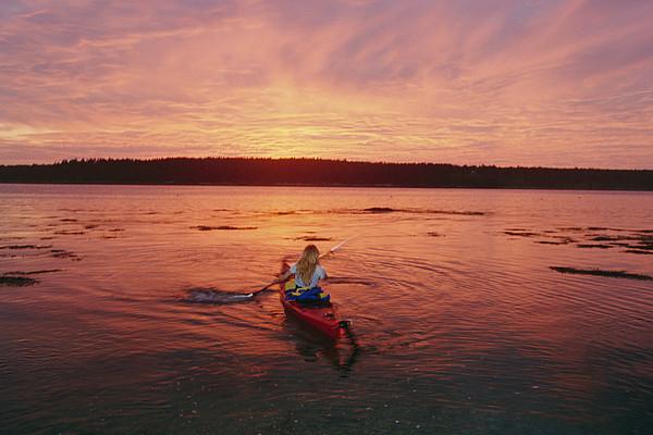 North America Photograph - Woman Kayaking At Dusk, Penobscot Bay by Skip Brown