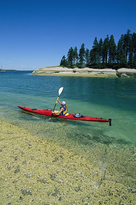 North America Photograph - Woman Kayaking, Penobscot Bay, Maine by Skip Brown