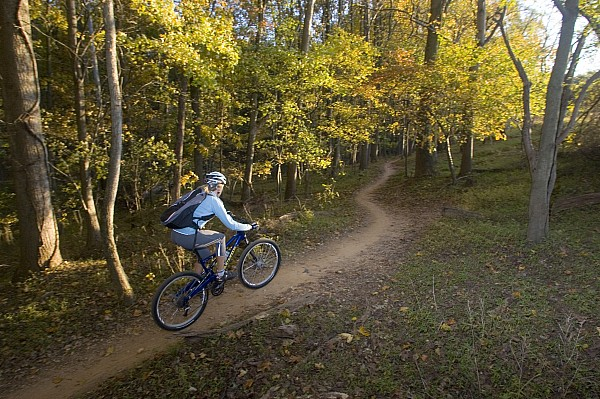 Caucasian Photograph - Woman Mountain Biker Rides Singletrack by Skip Brown