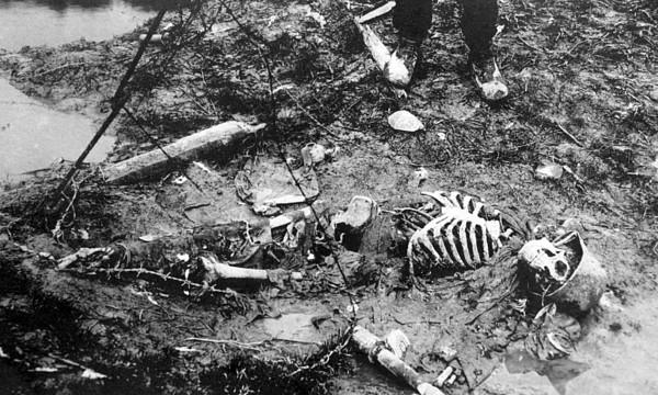 Photograph - World War I, Skeleton Of A Dead German by Everett