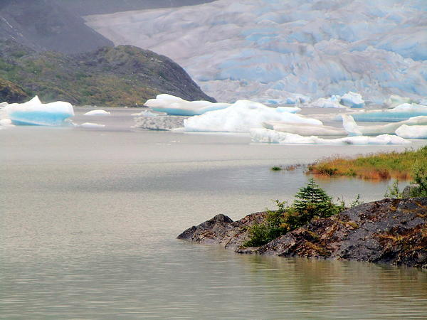 Mendenhall Photograph - You Wont Believe Mendenhall Glacier by Mindy Newman