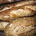Artisan Bread by Elena Elisseeva
