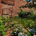 Olde Allegheny Community Gardens by Amy Cicconi