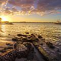 Sunset Light by Debra and Dave Vanderlaan