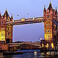 Tower Bridge In London At Dusk by Elena Elisseeva