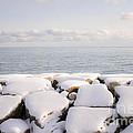 Winter Shore Of Lake Ontario by Elena Elisseeva