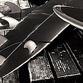 Fins And Boards by Ron Regalado