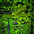Glowing Green Circuit Board by Amy Cicconi