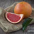 Pink Grapefruit by Sabino Parente
