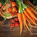 Fresh Vegetables by Mythja  Photography