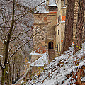Bran Castle by Gabriela Insuratelu
