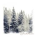 Winter Wonderland. Elegant Knickknacks From Jennyrainbow by Jenny Rainbow