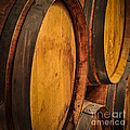 Wine Barrels by Elena Elisseeva
