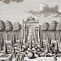 A Parterre With Orange Trees In The Garden Of The Lichtenstein Palace by Salomon Kleiner