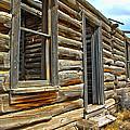 Abandoned Homestead by Shane Bechler
