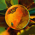 Ambered Butterfly Orb by Robin Moline