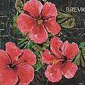 Antique Hibiscus Black 3 by Debbie DeWitt
