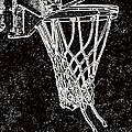 Basketball Years by Karol Livote