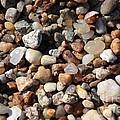 Beach Agates by Carol Groenen