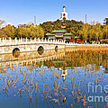 Beijing Beihai Park And The White Pagoda by Colin and Linda McKie