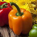 Bell Peppers And Poms by Garry Gay