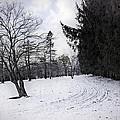 Berkshires Winter 9 - Massachusetts by Madeline Ellis
