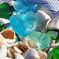 Blue Green Seaglass Shells Coastal Beach by Baslee Troutman