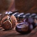 Buckeye Nut Still Life by Tom Mc Nemar