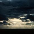 Clouds Sunlight And Seagulls by Hakon Soreide