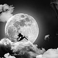 Dancing In The Moonlight by Alex Hardie