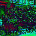 Delivering The Christmas Trees - 20130208 by Wingsdomain Art and Photography