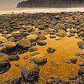 D.wiggett Rocks On Beach, China Beach by First Light