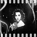 Elizabeth Taylor - Black And White Film by Absinthe Art By Michelle LeAnn Scott