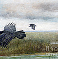 Flying To The Roost by Barb Kirpluk