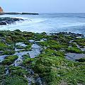 Four Mile Beach California by Francesco Emanuele Carucci